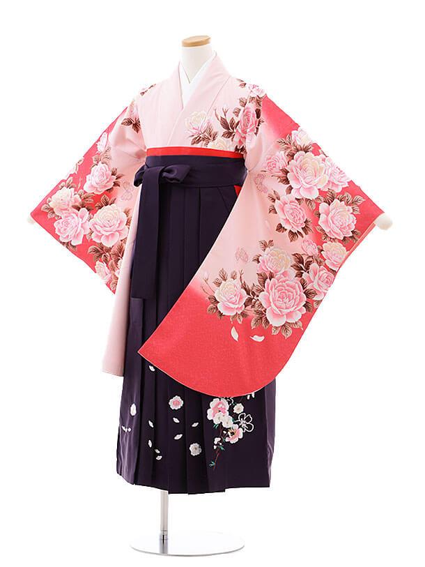 小学生卒業式袴レンタル(女の子)9769 ピンクぼかしバラ×パープル袴