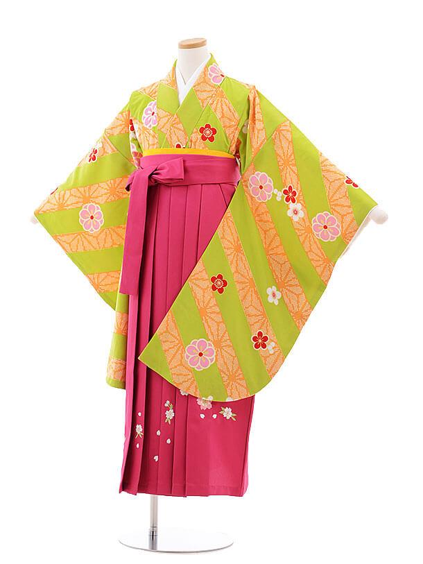 小学生卒業式袴レンタル(女の子)9775 黄緑斜めストライプ×ピンク桜袴