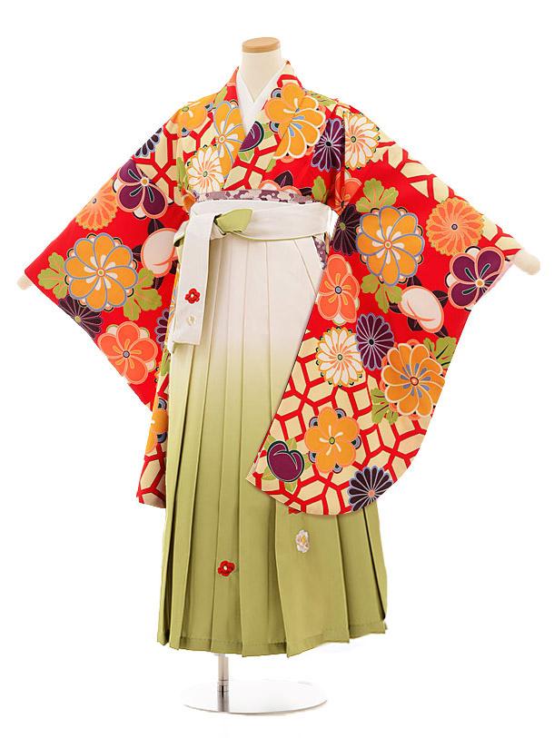 小学生卒業式袴レンタル(女の子)9811 赤地菊梅×白グリーン袴