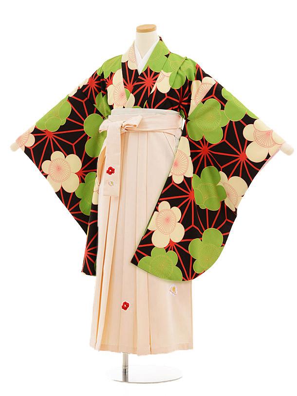 小学生卒業式袴レンタル(女の子)9817 黒地麻の葉梅×アイボリー袴