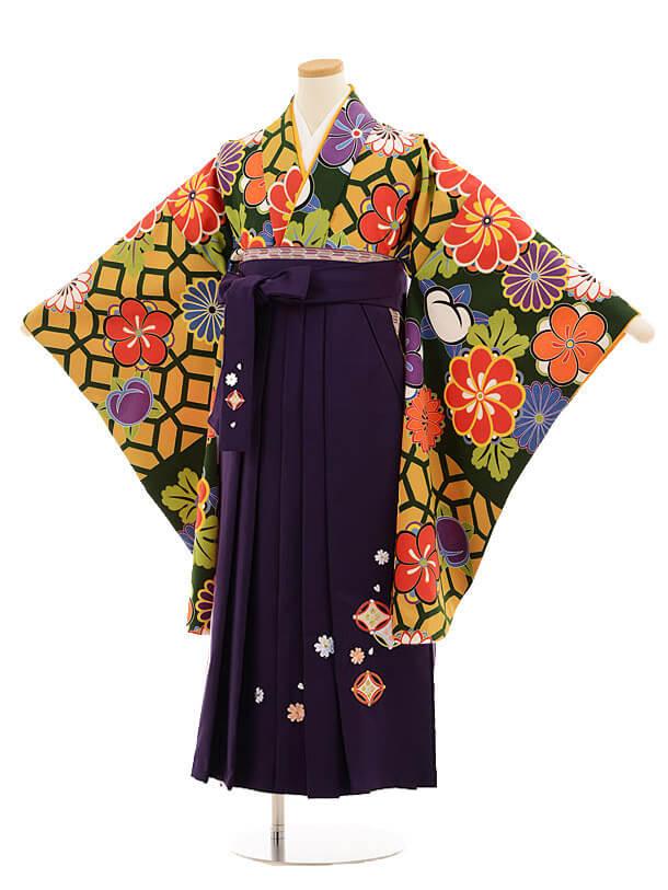 小学生卒業式袴レンタル(女の子)9820 グリーン地菊梅×紫袴