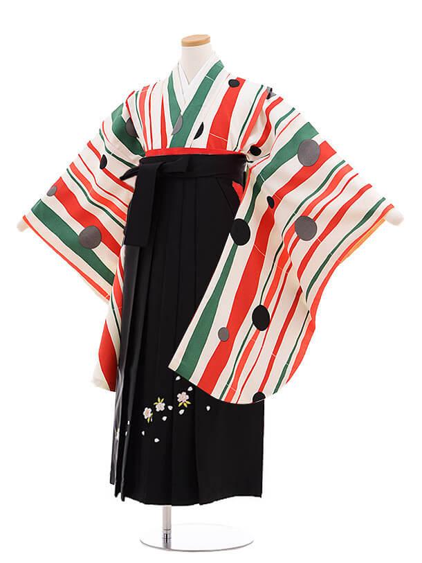 小学生卒業式袴レンタル(女の子)9891 白緑ストライプ水玉×黒桜袴