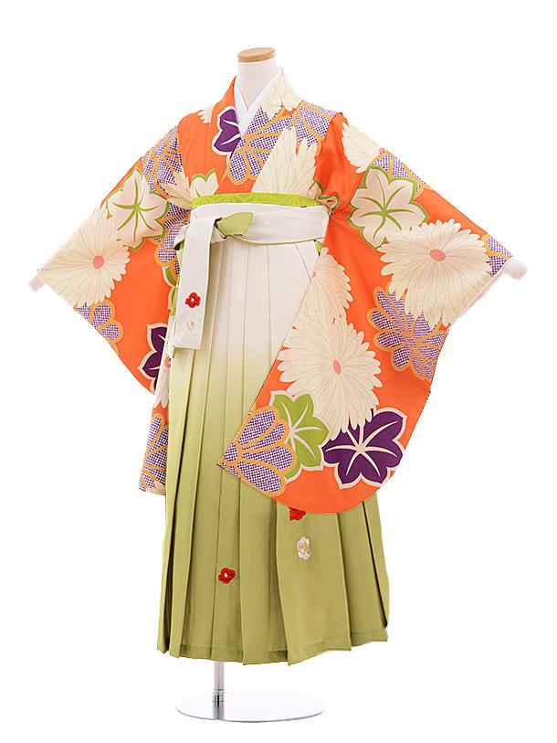 小学生卒業式袴レンタル(女の子)9899 オレンジ菊×白グリーン袴