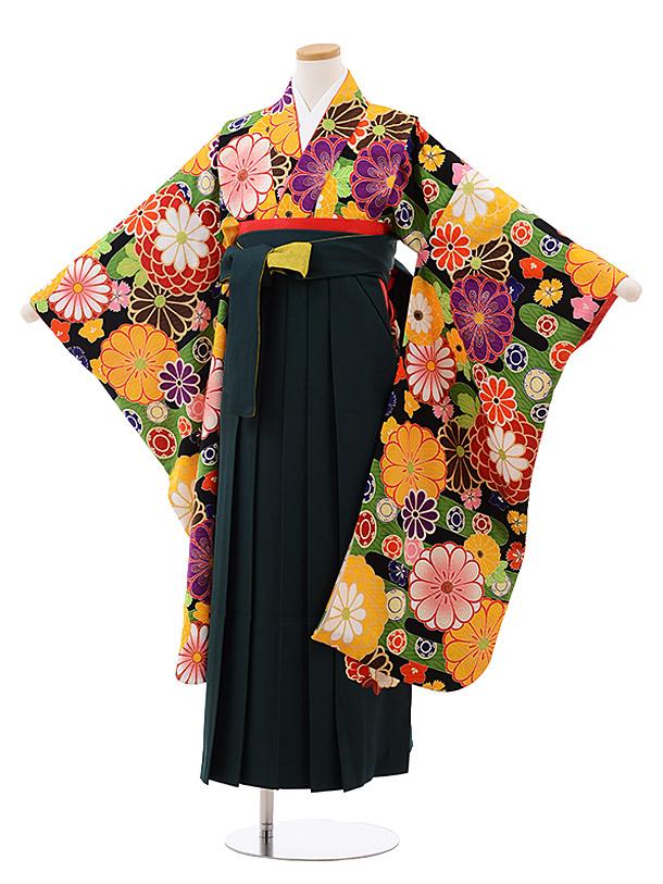 小学生卒業袴(女児)9943 九重 黒地 菊×グリーン袴