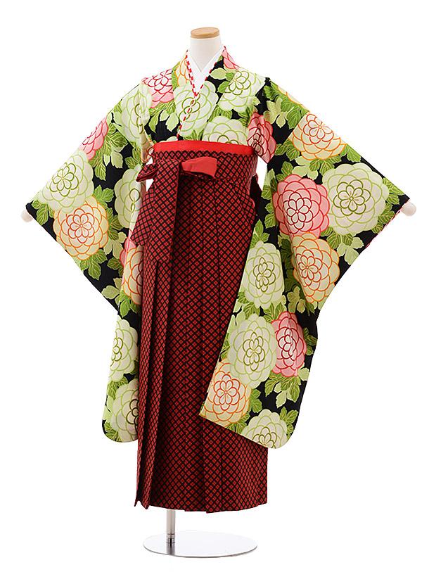 小学生卒業袴(女児)9945 紅一点 黒地 花×赤チェック袴