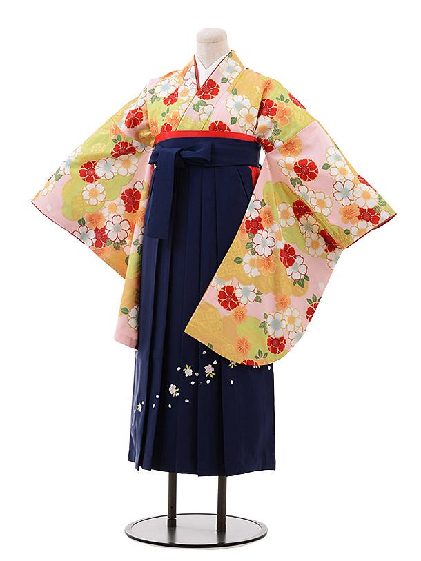 小学生卒業袴(女児)9962 ひいな ピンク地 桜×紺桜袴