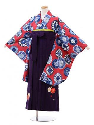 小学生 卒業式 袴 女の子 9988 ワイン地 菊×パープル袴