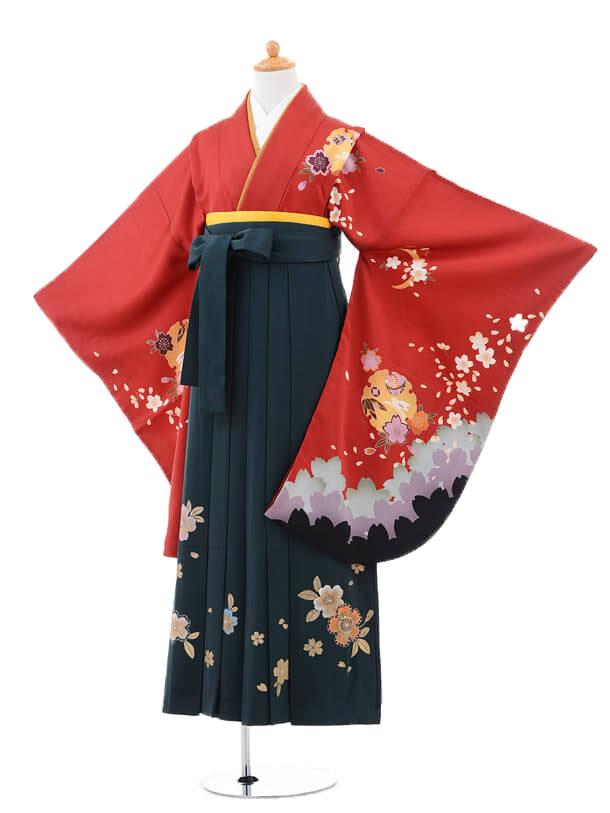 小学生卒業式袴(女の子)レンタルB072赤雪