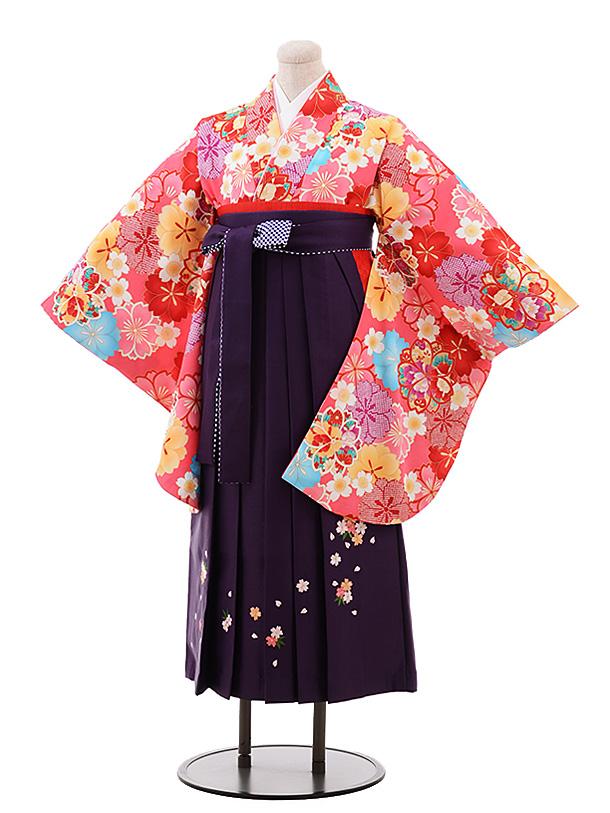 小学生卒業袴(女児)Z038ピンク地桜×パープル袴