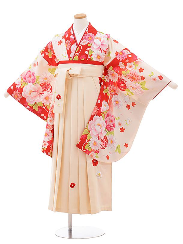 小学生卒業袴(女児)Z043クリーム赤花まり×クリーム袴