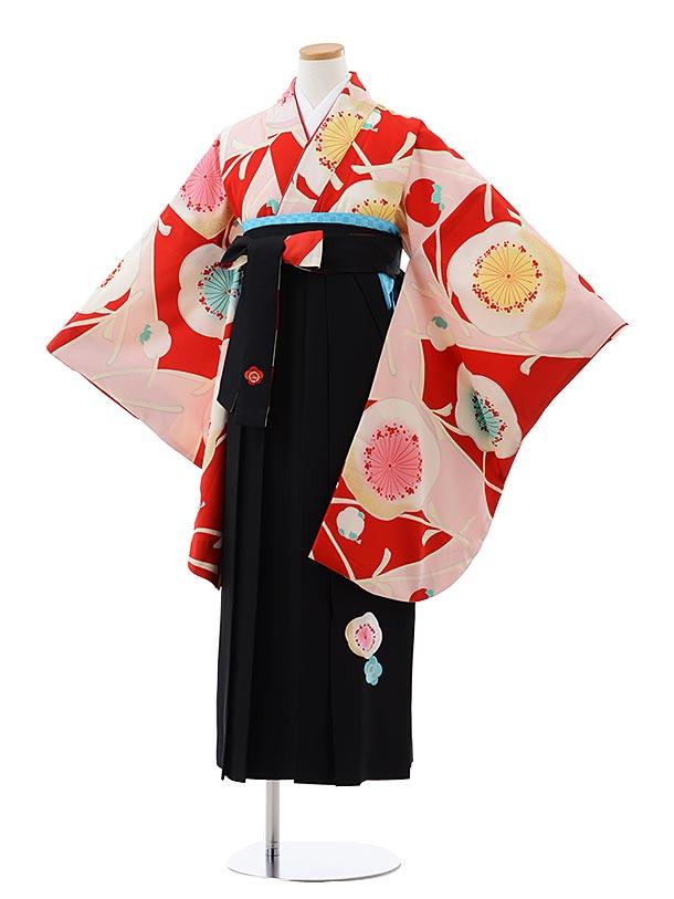 小学生卒業式袴レンタル(女の子) Z094 紅一点 赤地 梅x黒袴