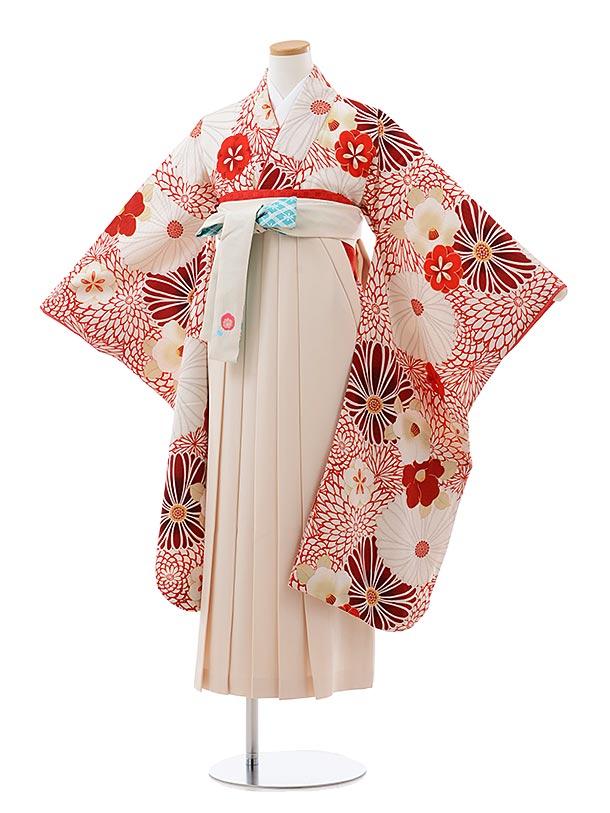 小学生卒業式袴レンタル(女の子) Z097 九重 白 赤 菊椿xクリーム袴