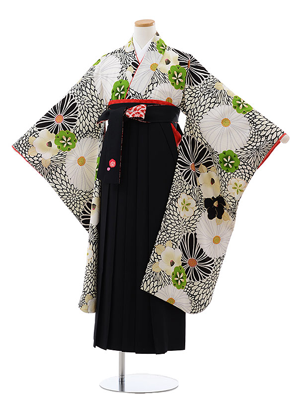 小学生卒業式袴レンタル(女の子) Z098 九重 白 黒 菊椿x黒袴