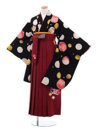 卒業袴レンタルZ151 JAPAN STYLExちはやふる黒水玉xエンジ袴