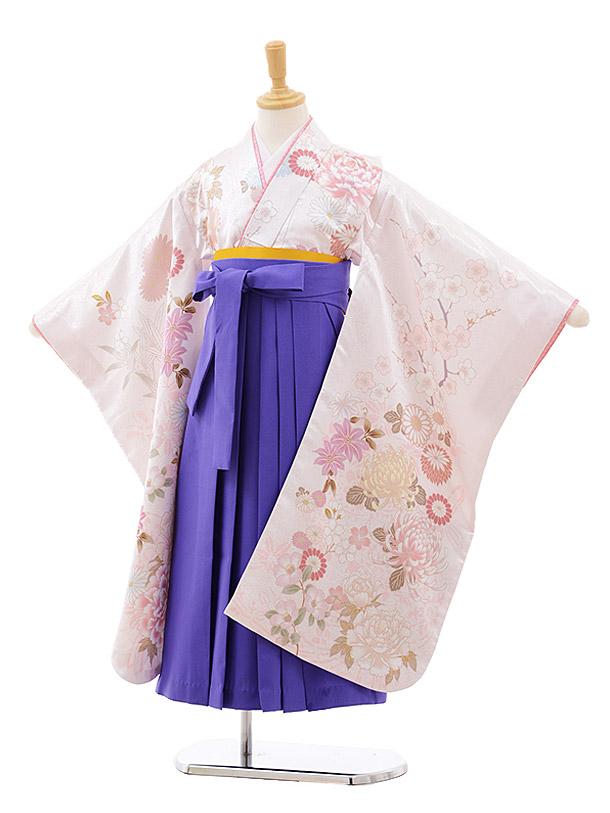 女児袴レンタル(7歳)7640 cotocomachi 白花×パープル袴