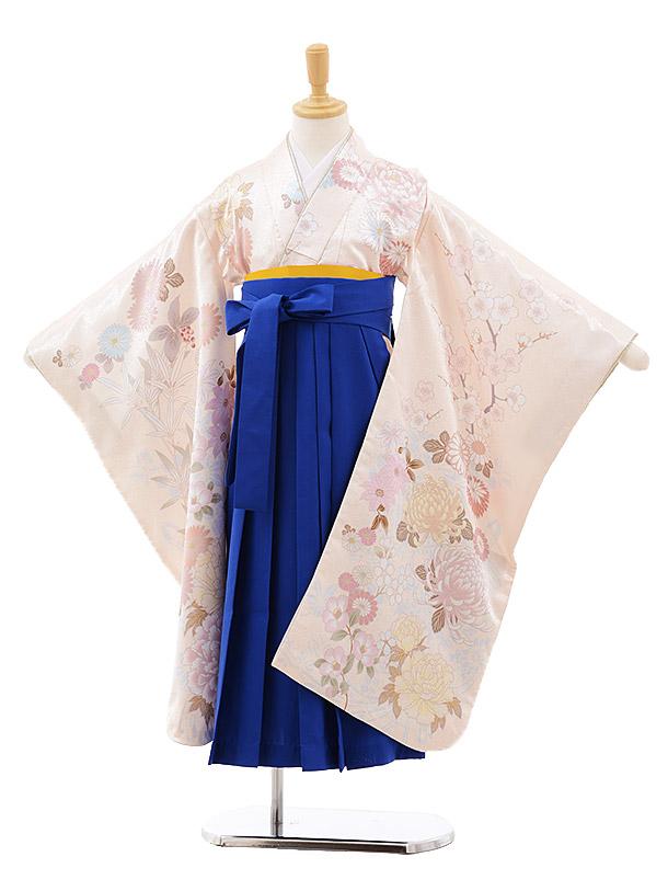 女児袴レンタル(7歳)7641 cotocomachi クリーム花×ブルー袴
