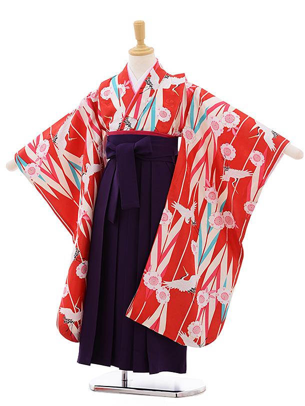 女児袴レンタル(7歳)7684 小町kids 赤地 矢柄 桜鶴×パープル袴