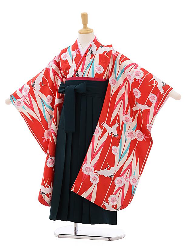 女児袴レンタル(7歳)7685 小町kids 赤地 矢柄 桜鶴×グリーン袴