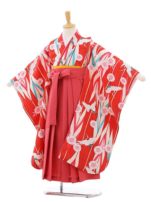 女児袴レンタル(7歳)7686 小町kids 赤地 矢柄 桜鶴×ピンク袴