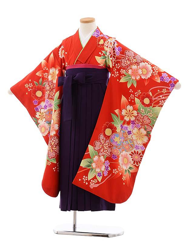 女児袴レンタル(7歳)7777 赤地 まり 花×パープル袴