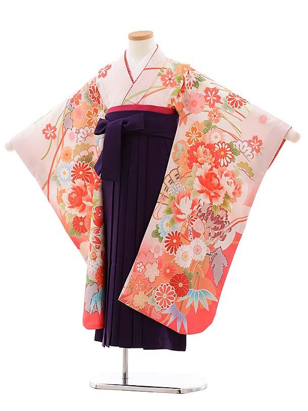 女児袴レンタル(7歳)7779 ピンク地 扇 ぼたん まり×パープル袴