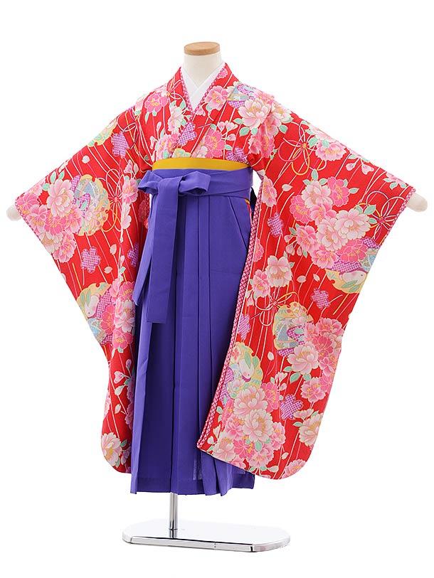 女児袴レンタル(7歳)7799赤地八重桜×パープル袴