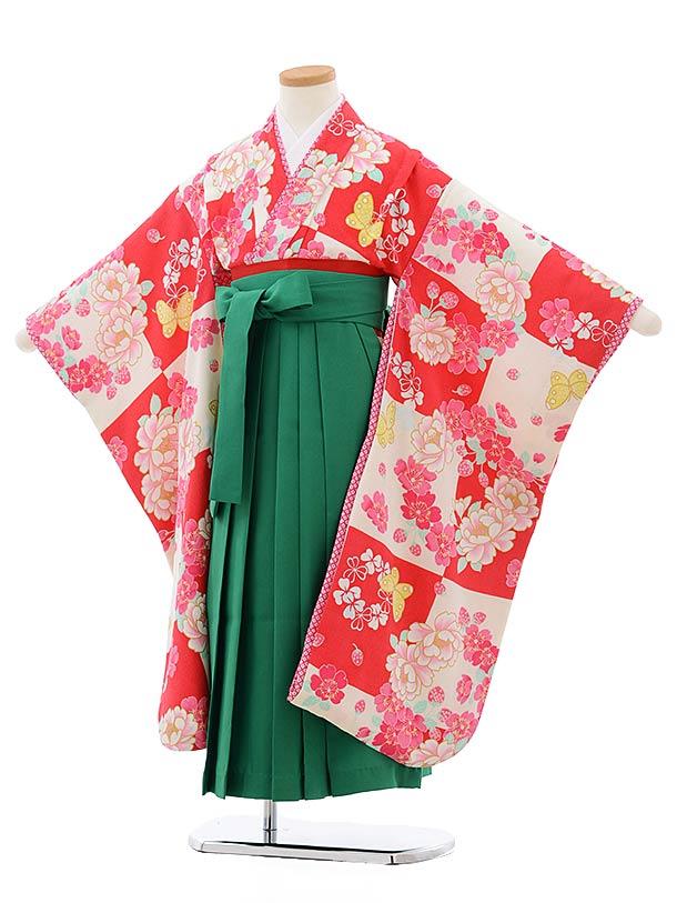 女児袴レンタル(7歳)7810チェリーピンク地に蝶×グリーン袴
