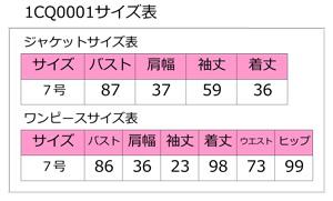 1cq0001_size