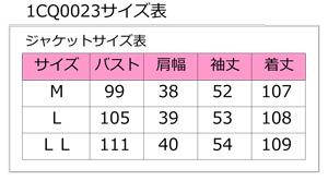 1cq0023_size