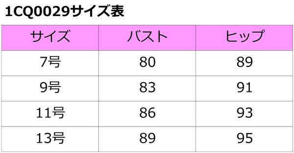 1cq0029_size