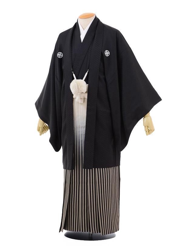 卒業式成人式袴レンタル157黒紋付×黒シルバーぼかし袴