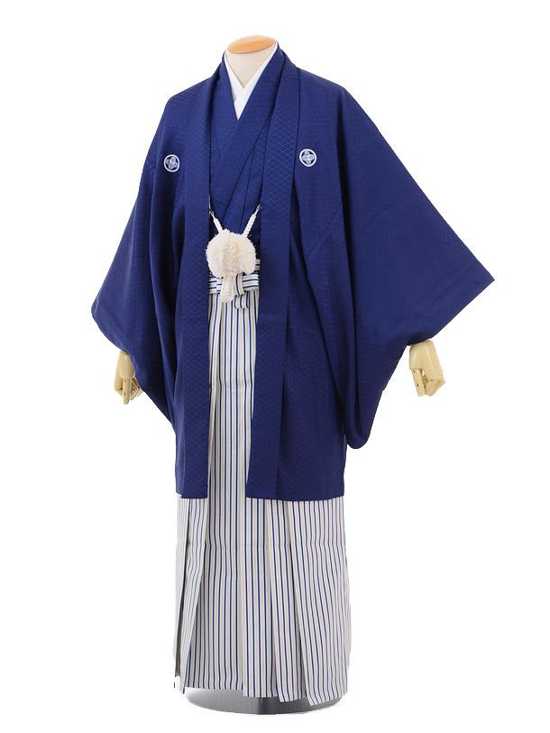 成人式卒業式袴レンタル159紺紋付×白紺シルバー縞袴