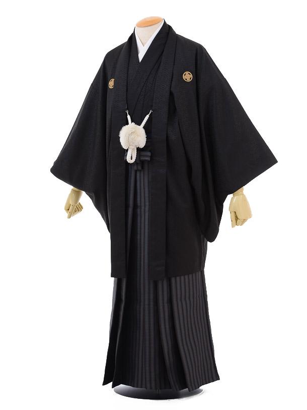 成人式卒業式袴レンタル174黒金刺繍龍馬×茶グレー縞袴