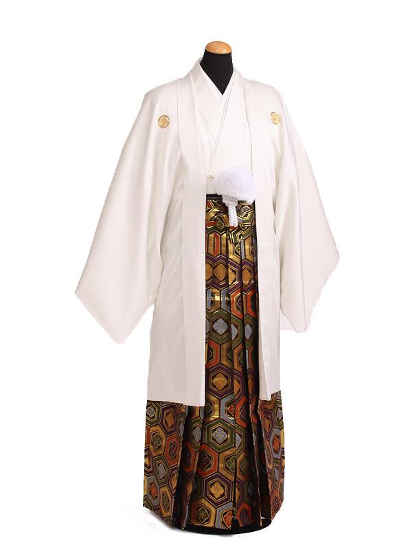卒業式成人式袴レンタル189白紋付×ゴールド亀甲袴