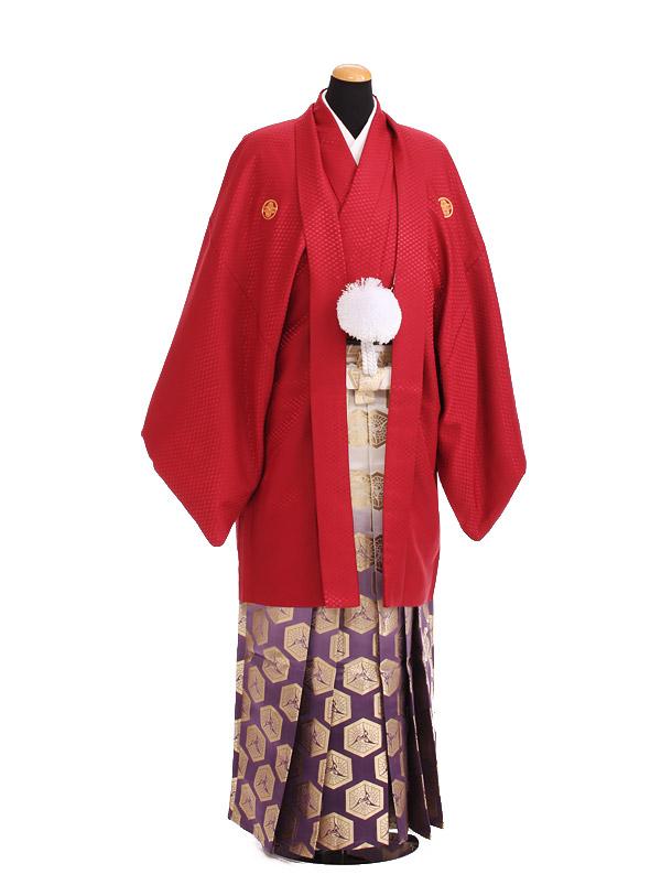 卒業式成人式袴レンタル197赤紋付×紫金ぼかし袴