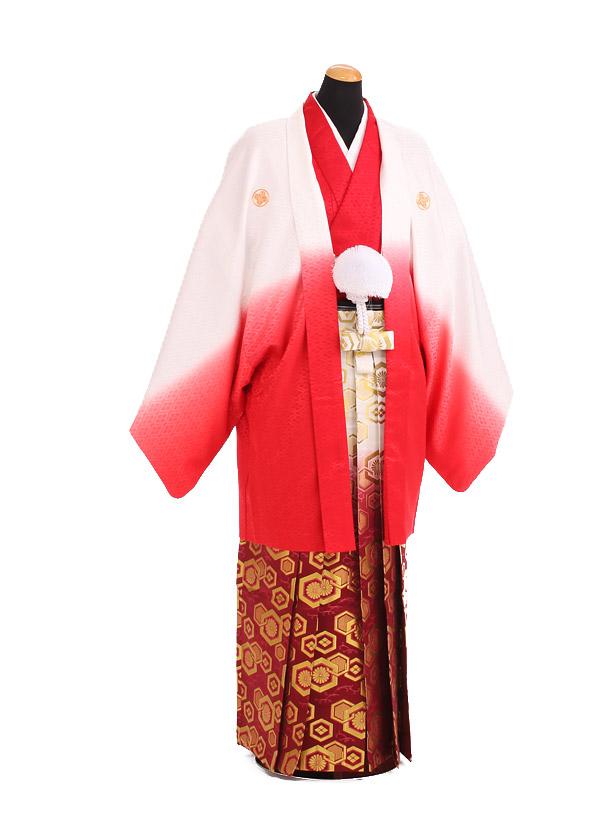 卒業式成人式袴レンタル198赤ぼかし紋付×赤金ぼかし袴