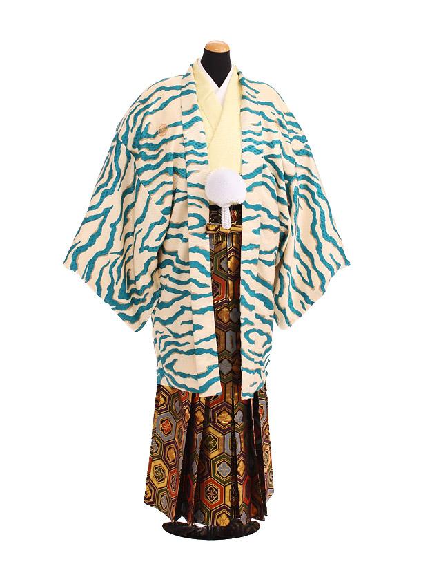 卒業式成人式袴レンタル202ブルー虎柄×ゴールド亀甲袴