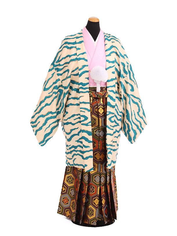 卒業式成人式袴レンタル203ブルー虎柄×ゴールド亀甲袴