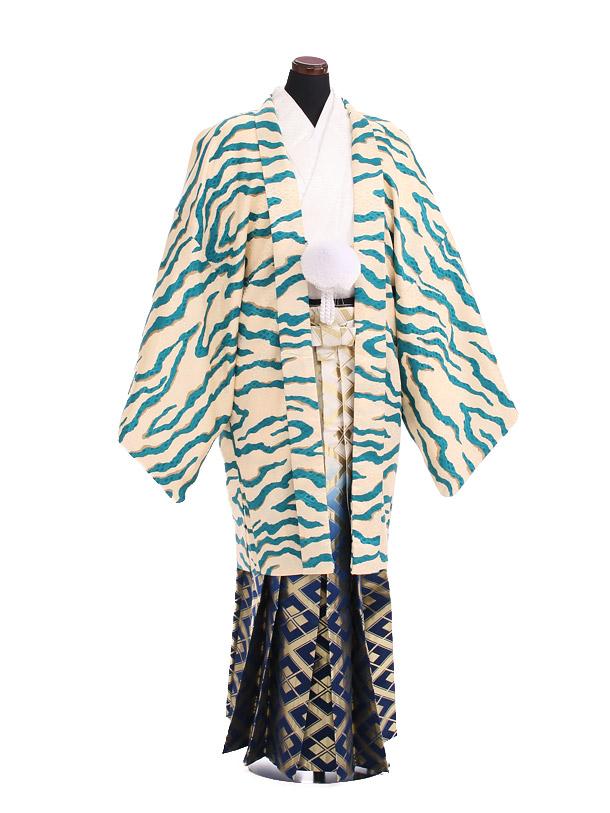 卒業式成人式袴レンタル204ブルー虎柄×紺ゴールド袴